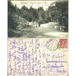 1911 BOSCOLUNGO (FI) DALLA...