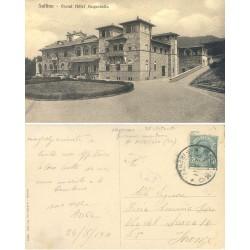 1911 SALTINO (FI) GRAND...