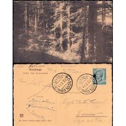 1911 BOSCOLUNGO (FIRENZE) -...